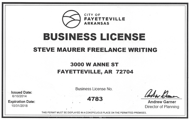 current business license for b2b copywriting service